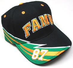 FAMU_F1_Cap_small.jpg