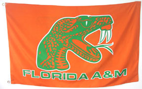 Florida_AM_University_House_Flag.jpg