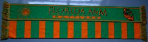 Florida_AM_Scarf_HBCU.jpg