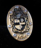Alpha_JeweL_Shield_Lapel_Pin_15